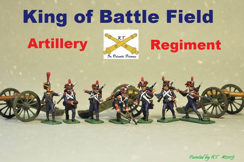 French  Napoleonic wars 1/72 scale Painted by KT