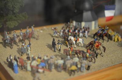 DNAPOLEON, von Luneville bis Waterloo, the complete exhibition
