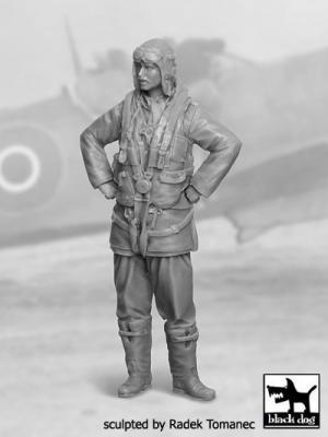 32029 - RAF Fighter pilot 1940-45 N°2