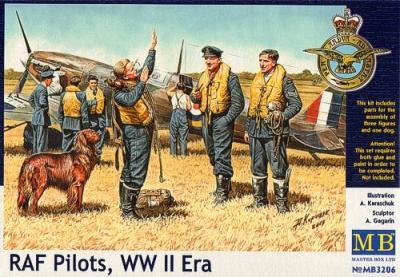 3206 - RAF Pilots WWII