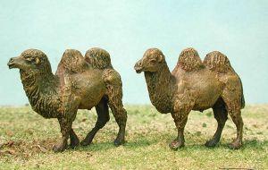 NIK-ANI 03 - Asiatische Kamele 1/72