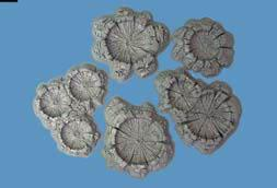 Crater Set (Unpainted)