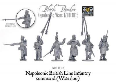 Napoleonic British Line Infantry command (Waterloo)